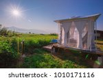 beautiful rice paddy field view ... | Shutterstock . vector #1010171116