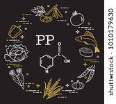foods rich in vitamin pp. beans ... | Shutterstock .eps vector #1010179630
