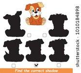 dog puppy beautiful shadow set... | Shutterstock .eps vector #1010184898