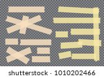brown  yellow adhesive  sticky  ... | Shutterstock .eps vector #1010202466