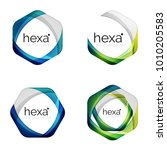 set of business hexagon vector... | Shutterstock .eps vector #1010205583