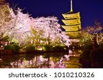 kyoto   cherry blossoms | Shutterstock . vector #1010210326