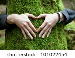 Heart Hand On Tree With Moss ...