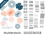 floral vector pattern brushes... | Shutterstock .eps vector #1010236318