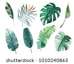 tropical watercolor leaves set. ... | Shutterstock .eps vector #1010240863