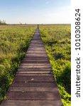long wooden path through the...   Shutterstock . vector #1010308624