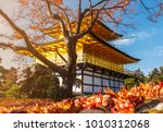 stunning fall foliage at... | Shutterstock . vector #1010312068