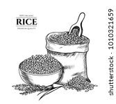 vector rice hand drawn sketch . ... | Shutterstock .eps vector #1010321659