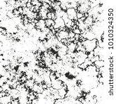 distressed overlay texture of...   Shutterstock .eps vector #1010324350