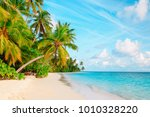 tropical sand beach with palm...   Shutterstock . vector #1010328220