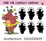 funny hippo girl in a skirt on... | Shutterstock .eps vector #1010328649