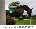 Stock photo race horse and jockey jumping over a hurdle 1010335120
