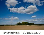 uncultivated farmland under a... | Shutterstock . vector #1010382370