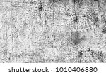 grunge black and white | Shutterstock . vector #1010406880