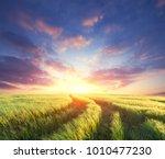 wheat field landscape  | Shutterstock . vector #1010477230
