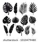 Stock vector set of black silhouettes of tropical leaves palms trees vector 1010479480