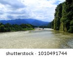 a river in the amazon forest ... | Shutterstock . vector #1010491744
