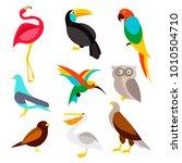 set of birds on a white... | Shutterstock .eps vector #1010504710