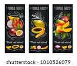three vertical tropical fruits... | Shutterstock . vector #1010526079