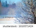 early morning ice   winter... | Shutterstock . vector #1010571424