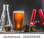 homebrew honey brown beer ...   Shutterstock . vector #1010593459