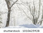 winter sunny morning in the... | Shutterstock . vector #1010625928