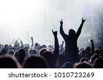 music fans enjoying rock... | Shutterstock . vector #1010723269