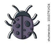 ladybug icon image | Shutterstock .eps vector #1010791426