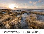 "the ""golden"" dunes at... | Shutterstock . vector #1010798893"
