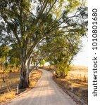 adelaide hills  south australia   Shutterstock . vector #1010801680