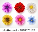 spring flowers colorful vector... | Shutterstock .eps vector #1010823109