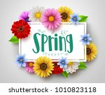 spring vector template design... | Shutterstock .eps vector #1010823118