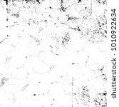 grunge black and white pattern. ... | Shutterstock . vector #1010922634