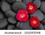 Set Of Three Red Rose On Pebbles