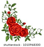 Stock vector vector illustration with red roses beautiful decorative vintage flower 1010968300