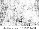 black and white texture in art... | Shutterstock . vector #1011014653