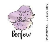 violet watercolor poodle dog... | Shutterstock .eps vector #1011074899