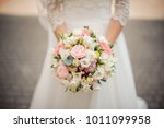 beautiful bride in a white... | Shutterstock . vector #1011099958
