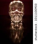 glass skull with backlight | Shutterstock . vector #1011100903