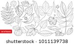 vector big set  1 with... | Shutterstock .eps vector #1011139738