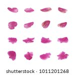 single orchid flower petal... | Shutterstock . vector #1011201268