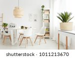 palm plant on white console... | Shutterstock . vector #1011213670