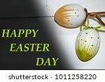 two easter decoration eggs on a ... | Shutterstock . vector #1011258220