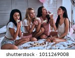 delicious cake. four beautiful... | Shutterstock . vector #1011269008