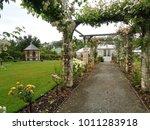 beautiful vibrant colorful... | Shutterstock . vector #1011283918