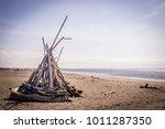 ocean shores  washington   may... | Shutterstock . vector #1011287350