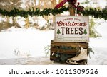 holiday porch decorations | Shutterstock . vector #1011309526