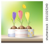 Hello Spring background with Spring flower Crocuses on wooden table top , vector , illustration