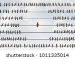 outcast concept as a flamboyant ... | Shutterstock . vector #1011335014