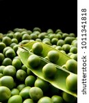 closeup of an opened green peas ... | Shutterstock . vector #1011341818